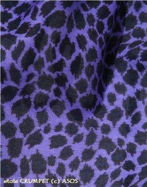 etole cachemere imprime leopard CRUMPET chez ASOS détail.jpg